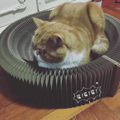 รังแมว ที่ลับเล็บแมวลูกฟูก