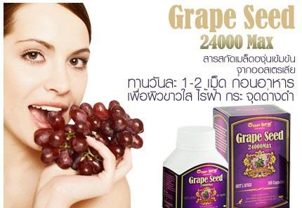 Grape Seed 24000 Grape Seed 24000 ราคาถูก
