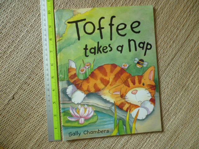 Toffee Takes a Nap (Paperback)