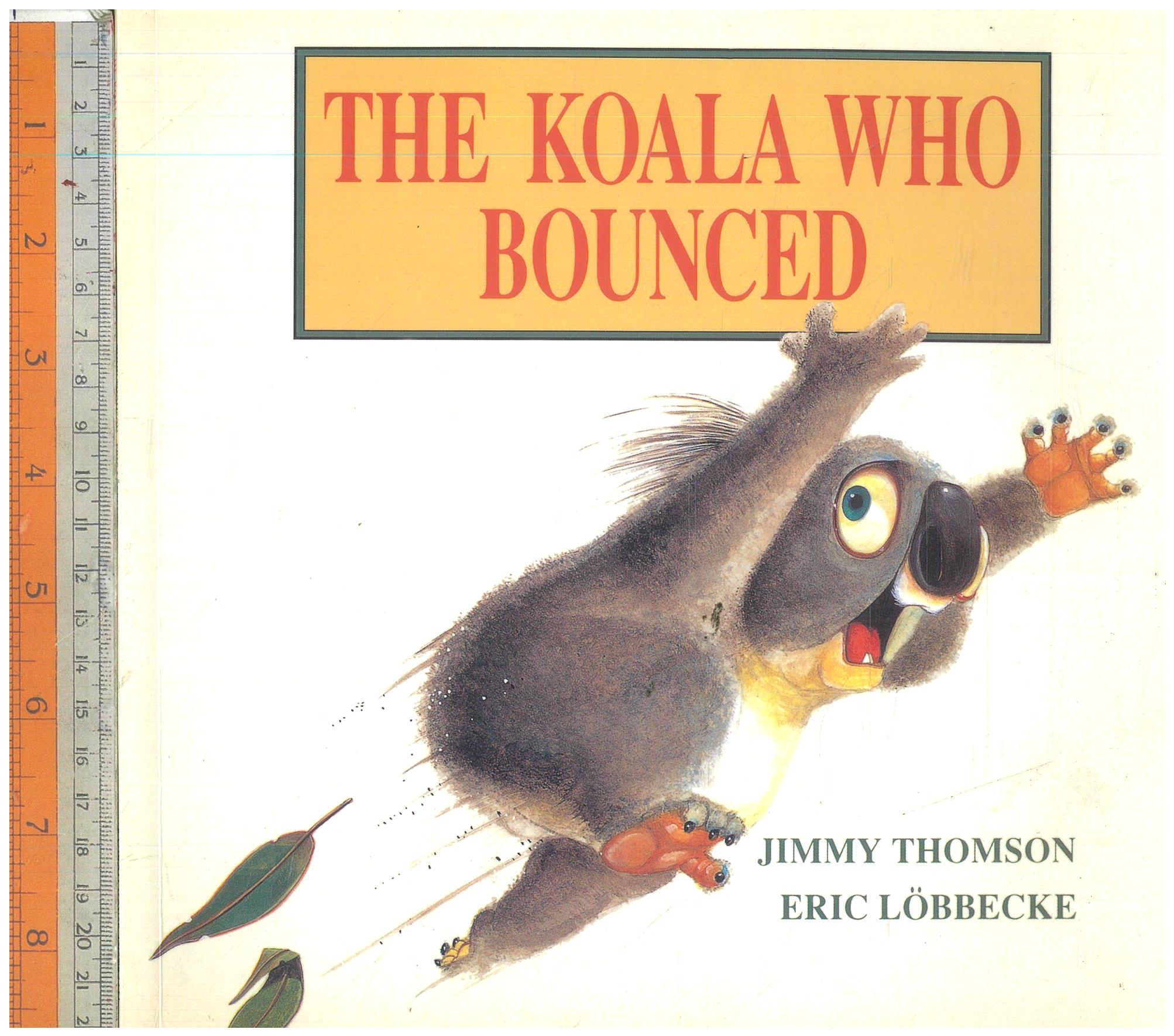 Koala who bounced