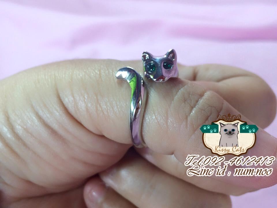 แหวนแมว ตาเพชร ฟรีไซต์