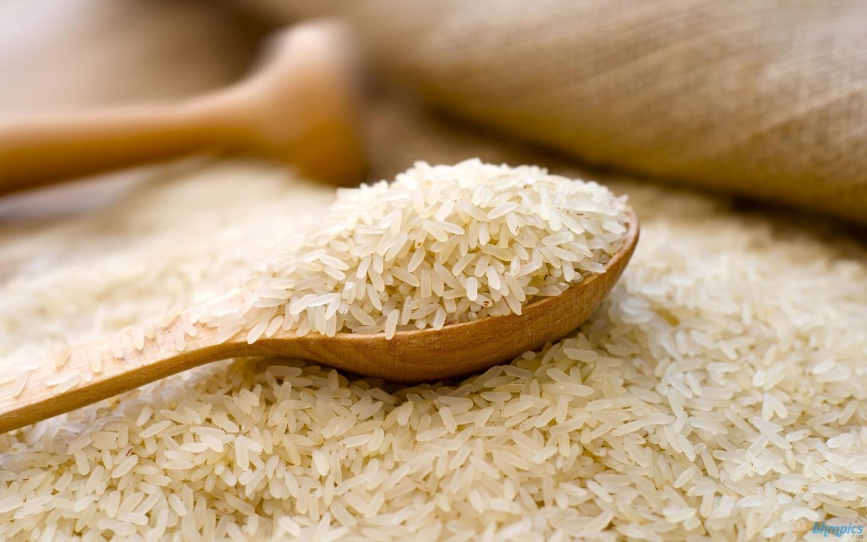 สารสกัด ข้าวหอมมะลิไทย (Thai Jasmine Rice Extract)