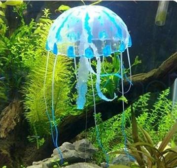 แมงกระพรุนซิโคลน สีฟ้า (ขนาดกลาง สีสดใสไม่เรืองแสง)