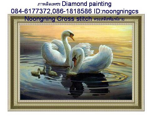 ครอบครัวหงส์เล่นน้ำ ภาพติดเพชร Diamond painting